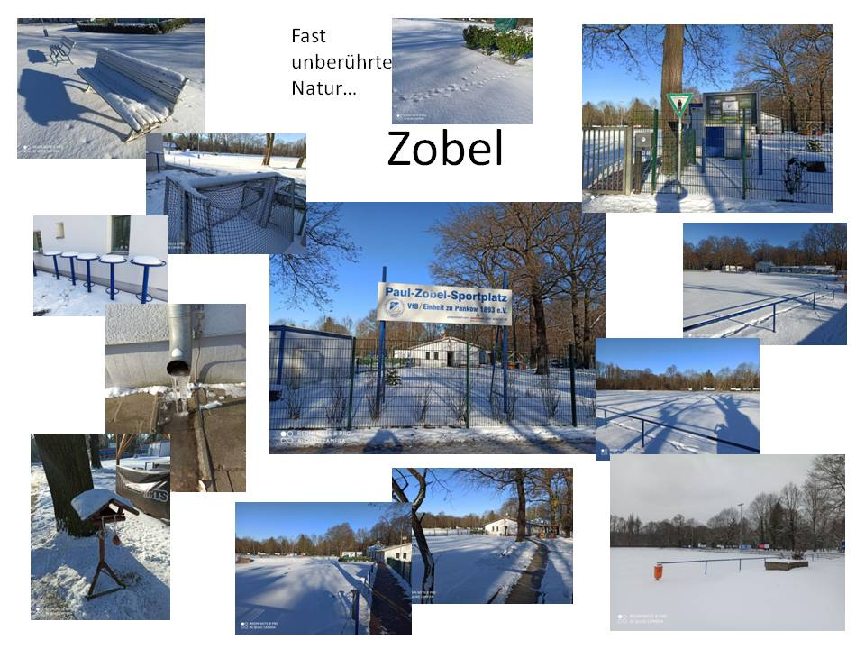 Winter 2021 Zobel.jpg
